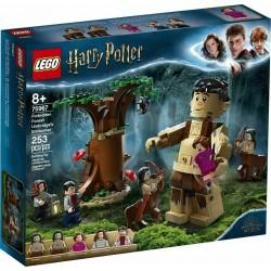 LEGO 75967 HARRY POTTER Forbidden Forrest  GIU 2020